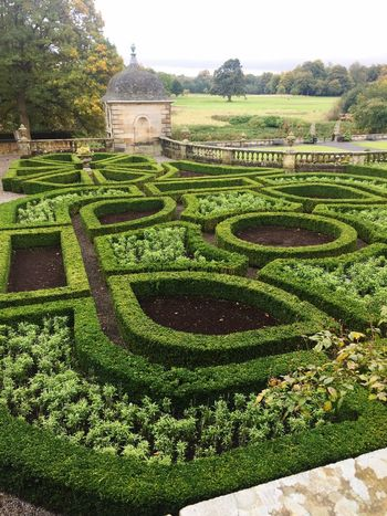 Travel Destinations Formal Garden Hedge High Angle View Design Green Color Plant Built Structure Architecture Growth Building Exterior History Tourism Famous Place Ornamental Garden Ancient Topiary Nature Landscaped Culture PollokPark Glasgow