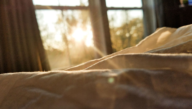 Good Morning Sunshine Tranquility Paece Peaceful Sleep Sleeping Sleepy Textile Indoors  Day Nature Sunlight Bedroom Bedroom Window Bedroom View  Loving Soft Softness Loving Life! Soft Focus Soft Colors  Need Coffee Happy Content 😚