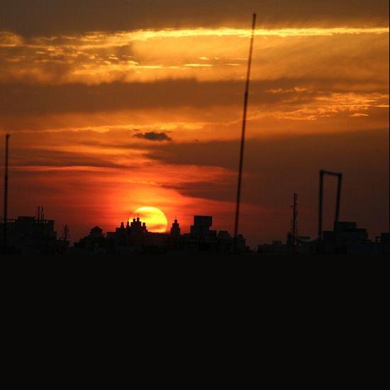 Sunset Sunrise Sun Terrace VSCO Kutch Beautiful Indianpictures Orange India_clicks Sky Ig_gujarat People Nature India Horizon Photooftheday _soi Rajkot Dessert Night Morning Instasky All_sunsets Colourfull_vibrant_gujarat _oye everydaymumbai everydaye instagram_rajkot repostindia
