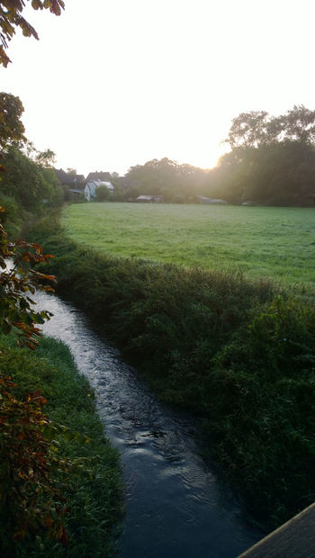 a small river next to a meadow Countryside Field Grass Great Atmosphere Green Idylle Morning Relaxing Moments River Sachsenhagen Schaumburg Sunrise Tree Trees