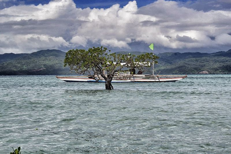 Bangka Cagbaleteisland Explore Philippines EyeEm EyeEmNewHere Island Hopping Mountain And Sea Sandbar Sky And Clouds Tree Sky And Sea Waterfront