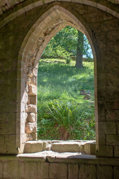 norman archway looking out to countryside Ancient Norman Plant Arch Architecture Built Structure Day Green Color History No People Old Outdoors Stone Wall The Past Tree Window