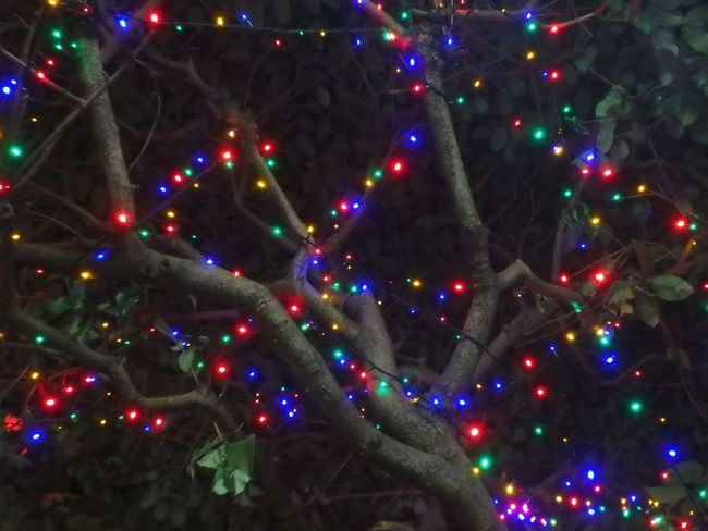 Illuminated Night Green Red Yellow Love It Colors Love Nice Multi Colored Cute Cian Blue Beauty