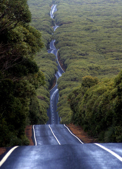 This image always brings a smile to my face, even after a very strange day. Cape Du Couedic Rd, Kangaroo Island, South Australia. Photo by Luke Hemer. Copyright Luke Hemer. Australia Australian Landscape Leading Lines Path Travel Beauty In Nature Curve Day Forrest Nature No People Outdoors Road The Way Forward Transportation Tree