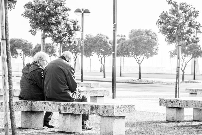 Bench Black And White Day High Contrast Bnw Love ♥ Old Couple Rear View Sitting Tree