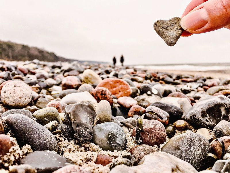 LoveTheCoastFeeling Beach Sea Human Hand Shore Human Body Part Real People One Person Sand Water Animal Themes Pebble Seashell Animals In The Wild Nature Outdoors Animal Wildlife Pebble Beach Holding Large Group Of Animals Day Heart In Love Couple Couples My Year My View