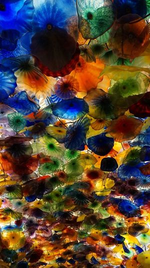 Bellagio Hotel; Las Vegas, NV Multicolors  Glass Flowers Backgrounds