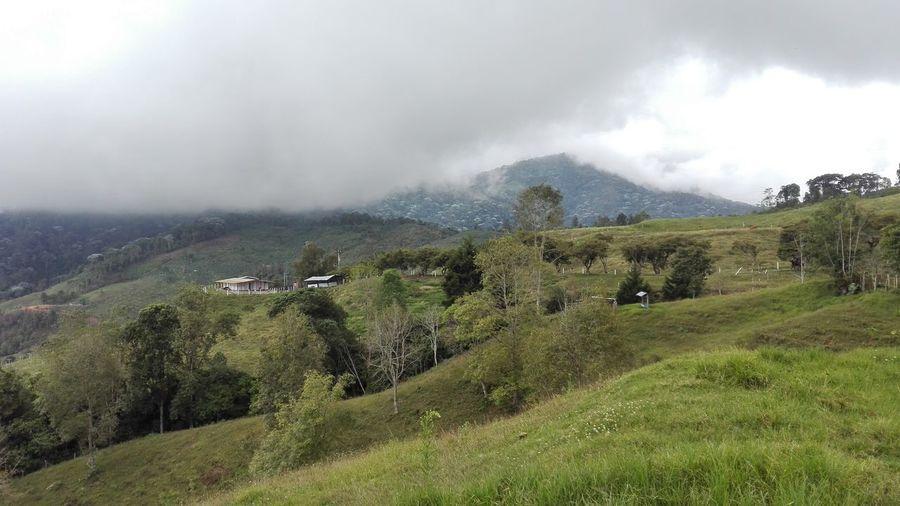 Corregimiento de Buenos Aires, Municipio de San Pedro Valle del Cauca - Colombia Agriculture Rural Scene
