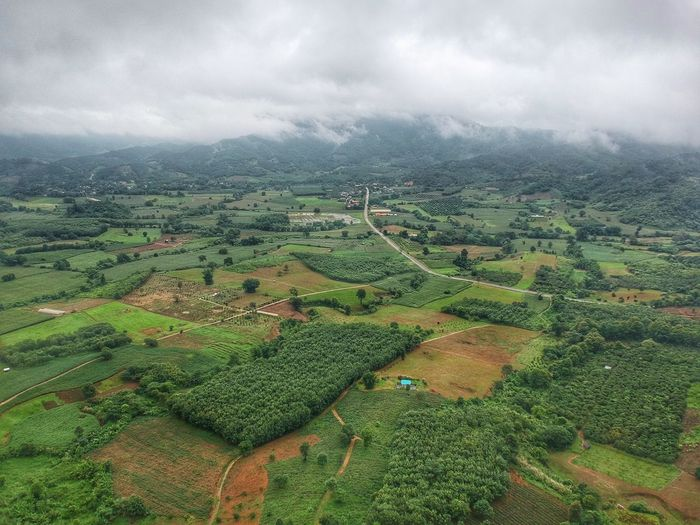 Skyscraper Thailand Top View Drone  Droneshot Drone Moments Cloud - Sky Cloud Clouds And Sky Mountain Geen Mountain Nature Nature Photography Tea Crop Tree Rural Scene Agriculture Field Aerial View Crop  Farm Sky Landscape Tea Leaves