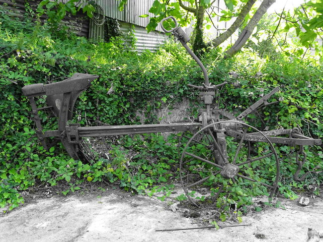 Nature fights back Machinery Nature Fighting Back Neglected Old Machinery Abandoned Beauty In Nature Growth Outdoors