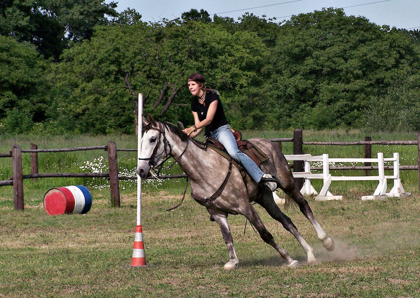 Animal Themes Day Domestic Animals Field Full Length Grass Horse Horseback Riding Leisure Activity Lifestyles Livestock Mammal Nature One Animal One Person Outdoors People Real People Sky Standing Tree Young Adult Young Women