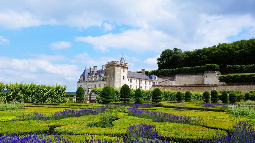Chateau Villandry Beauty In Nature Green Color Green Freshness Chateau Villandry Castle Villandry Castle Cloud - Sky Outdoors Architecture No People Day Growth Flower Building Exterior Nature