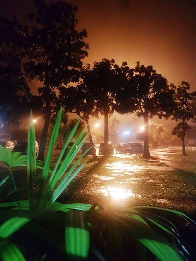 rain... Rain Night Night Lights Shadow No People Scenics Scenery Beautiful EyeEmNewHere Shades Of Winter