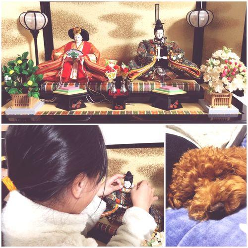 Japanese Culture The Doll's Festival Of Japan Girl Mydaugher Setting