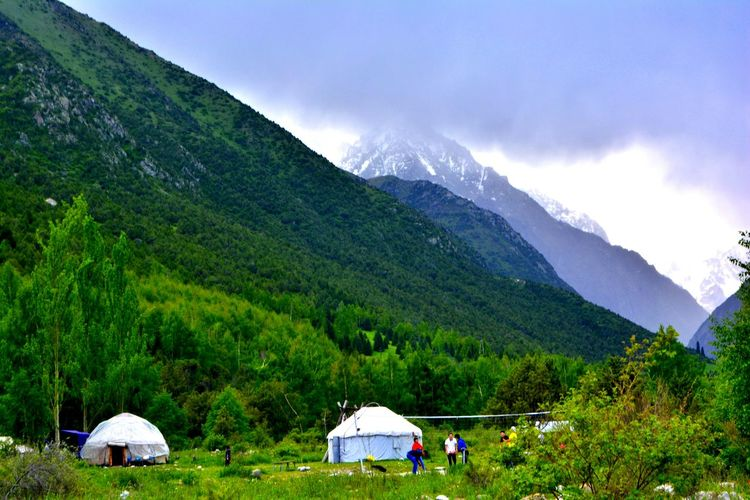 Scenic View Of Tree Mountains By Tents Against Sky