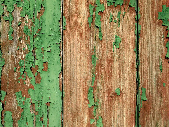 Close-up of peeled wooden plank