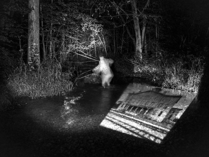 Shades Of Grey Pine Creek Night View Self Portrait