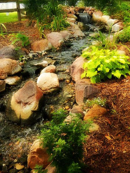 Day Nature Outdoors Plant Rock Stone Stream Waterfall My Best Photo 2015 Lincoln Nebraska Lincoln,NE Lincoln, Nebraska
