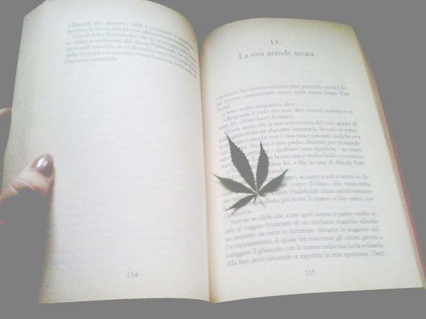 Book Weed Monochome Vintagefilter