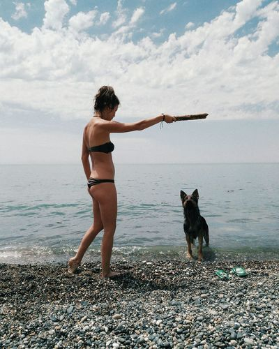 Young Woman Playing With Dog While Holding Stick On Pebbles Shore At Beach