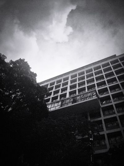 Black & White Urban Geometry IPhoneography Architecture Monochrome Cityscape Light And Dark Sky And Clouds Building And Trees Building And Sky