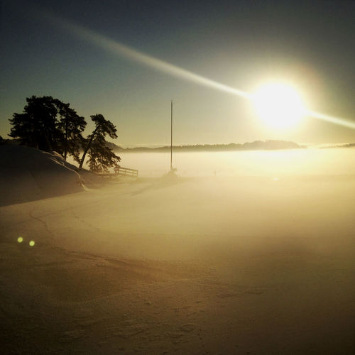 Fog over a frozen lake at sunrise. Beauty In Nature Environment Landscape Lens Flare Nature No People Outdoors Sky Sun Sunlight Tranquility Tree