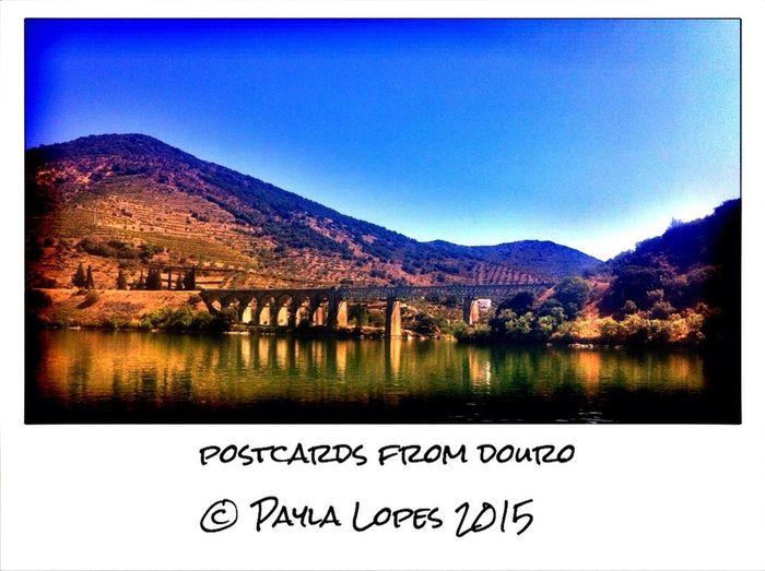 Pormenores do Douro Douro  River Douro Valley Bridge Walking Around Escaping EyeEm Nature Lover