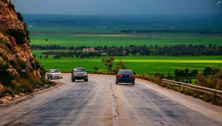 Strada di montagna verde ad est della Libia 🌲🗻 Cyrenaica Taking Photos EyeEm Nature Lover Followme Nice View