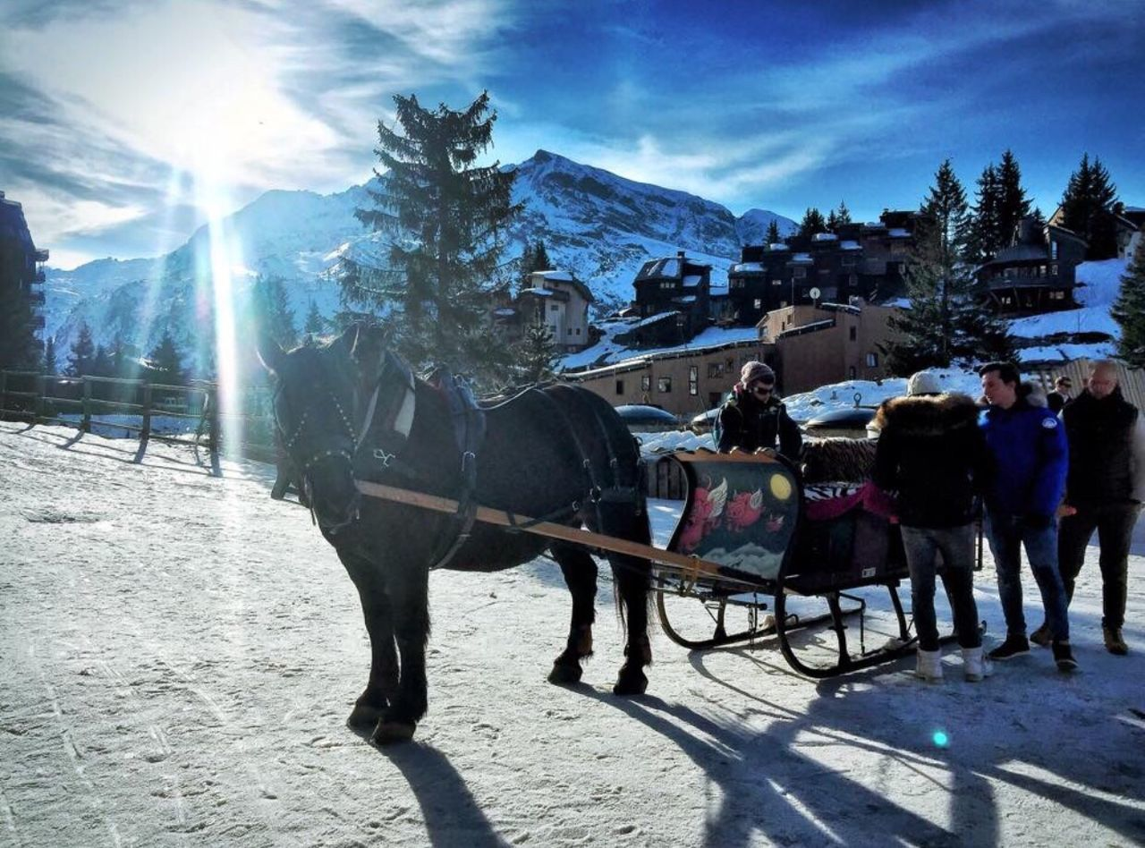 horse, cold temperature, domestic animals, snow, horsedrawn, transportation, outdoors, day, mountain, winter, sunlight, full length, horse cart, men, mammal, nature, standing, sky, one person, adult, people