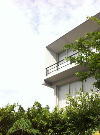 modern architecture in garden clouds and skySky And Clouds Clouds And Sky Outdoors Sky Garden Building Exterior Modern House Home Mobilestock Modern Home House Architecture Modern Architecture Modern Plant Tree Leaves Nature Leaf