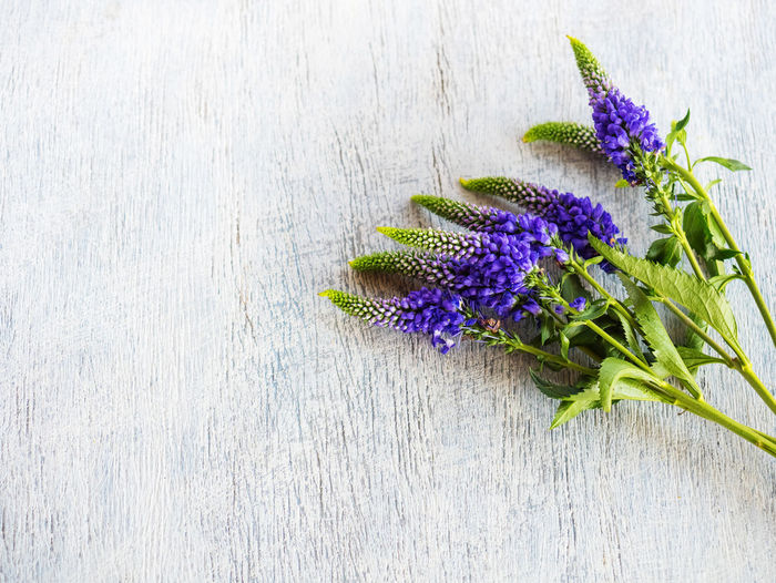 Flower Flowering Plant Purple Freshness Plant Vulnerability  Fragility Close-up Nature Beauty In Nature Inflorescence No People Flower Head Green Color Table Petal Wood - Material Indoors  High Angle View Growth Lavender