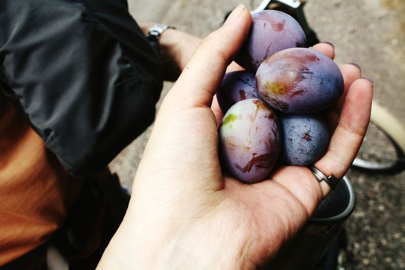 Cropped Image Of Hands Holding Grapes