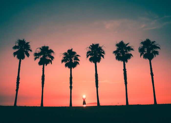 Silhouette Person Standing Amidst Palm Trees Against Sky During Sunset