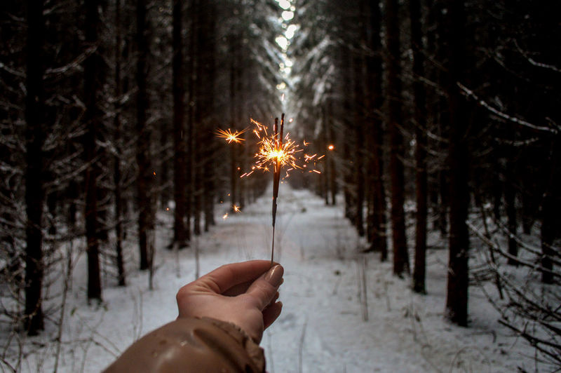 Cropped hand of woman holding lit sparkler in forest during winter