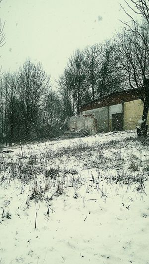 It's Cold And It 's Snowing Check This Out Very Fucking Nice My Live, My Wold