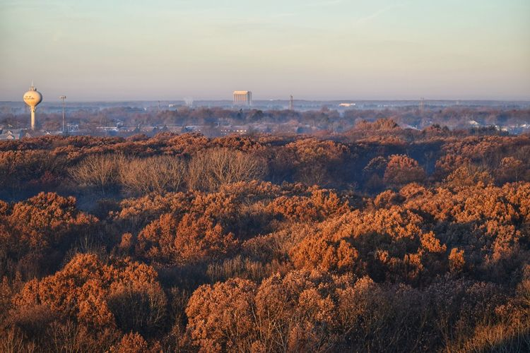 Sunrise Elevated View Sunlight Water Tower Blackwellforestpreserve Outdoors No People Autumn Landscape