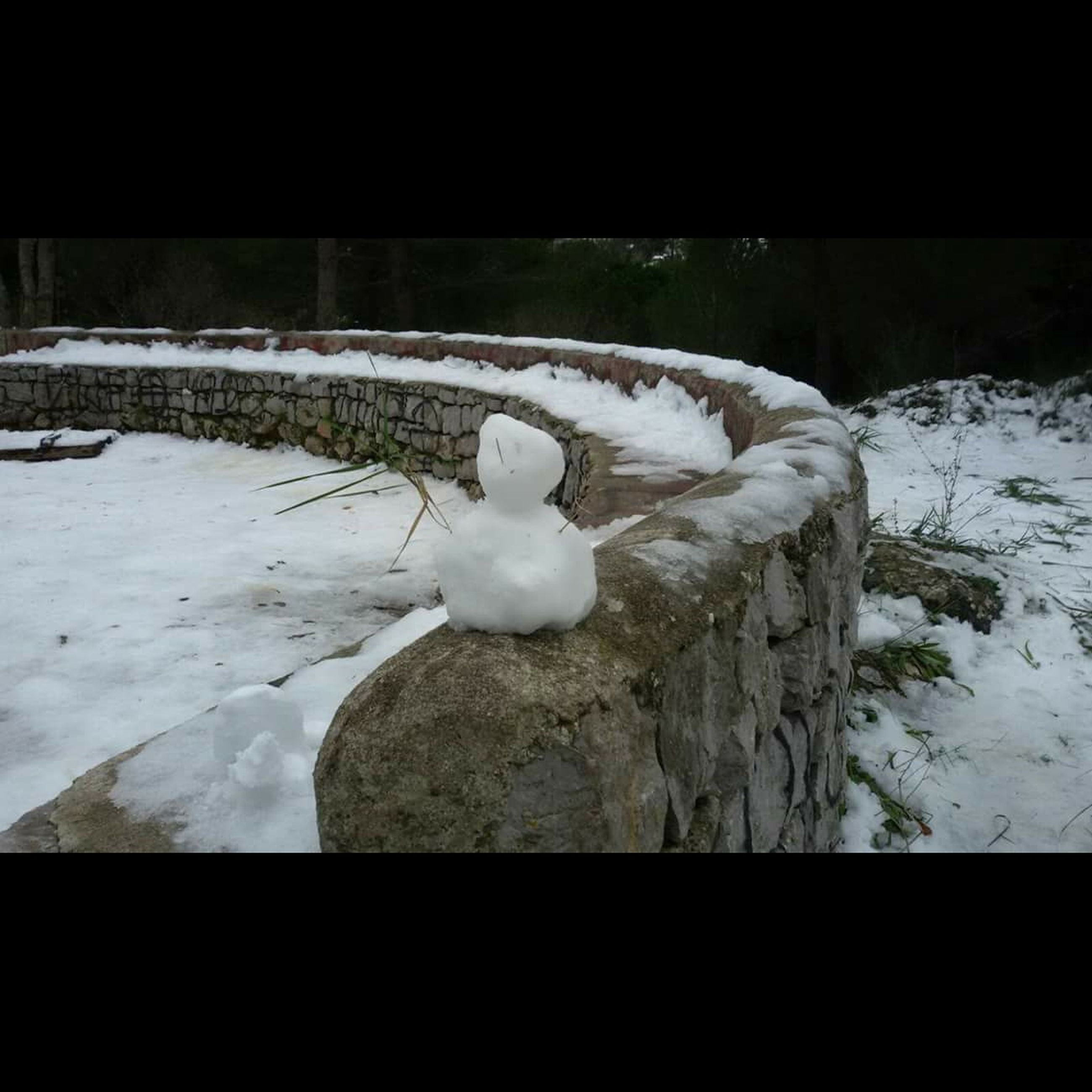 winter, snow, cold temperature, nature, no people, outdoors, beauty in nature, day, close-up