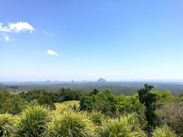 Because mountain top views are my favourite, montville looks stunning on a sunny winter in Australia Mountain Outdoors Scenics Nature Sky Australia Olympus Photography Wanderlust Australian Landscape Traveling Landscape Queensland