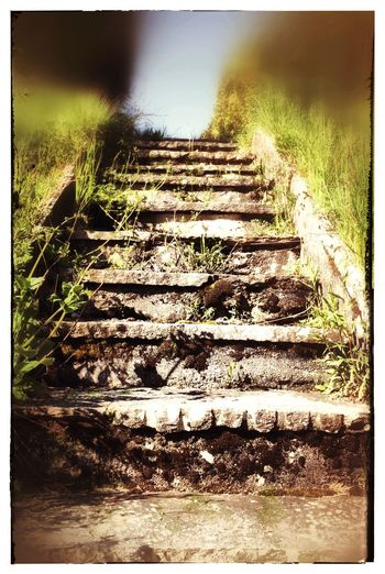 Stone Stairs Green Grass Blue Sky Stones Green Color Green Grey Stones Stairs Stairway To Heaven Hanging Out Taking Photos Relaxing Enjoying Life Hi! Nature On Your Doorstep Blurry On Purpose Blurred Blurred Effect