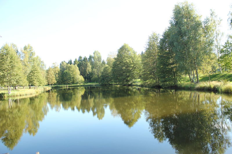 Beauty In Nature Calm Clear Sky Day Green Green Color Growth Lake Majestic Nature No People Reflection Scenics Sky Standing Water Tranquil Scene Tranquility Tree Water Waterfront WoodLand Växjö  Sweden