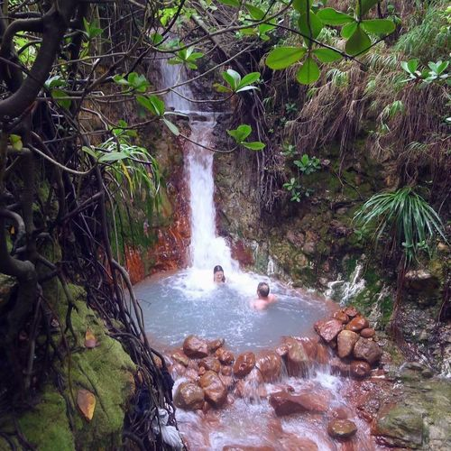 Dominica Paradise On Earth Beauty In Nature Day Flowing Water Forest Freshness Long Exposure Motion Nature Outdoors Paradise Real People River Rock - Object Scenics Tranquil Scene Tree Water Waterfall