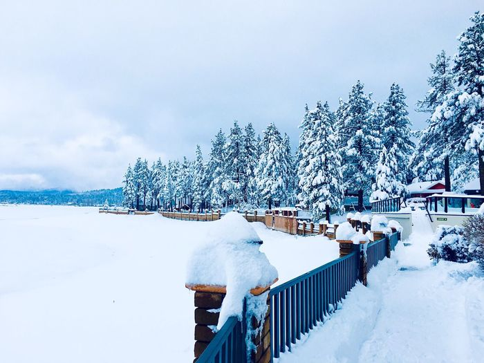 Winter Snow Cold Temperature Sky White Color Tranquility Nature My Best Photo