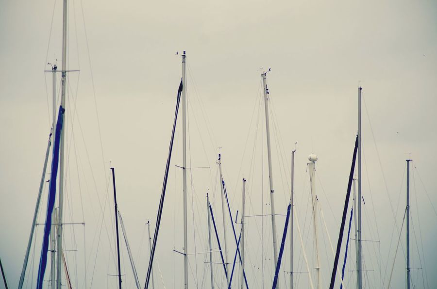 EyeEm Masterclass EyeEm Best Shots Pole Mast Lines My Lost Proberty Day Outdoors No People Cold Temperature Winter Nature Close-up