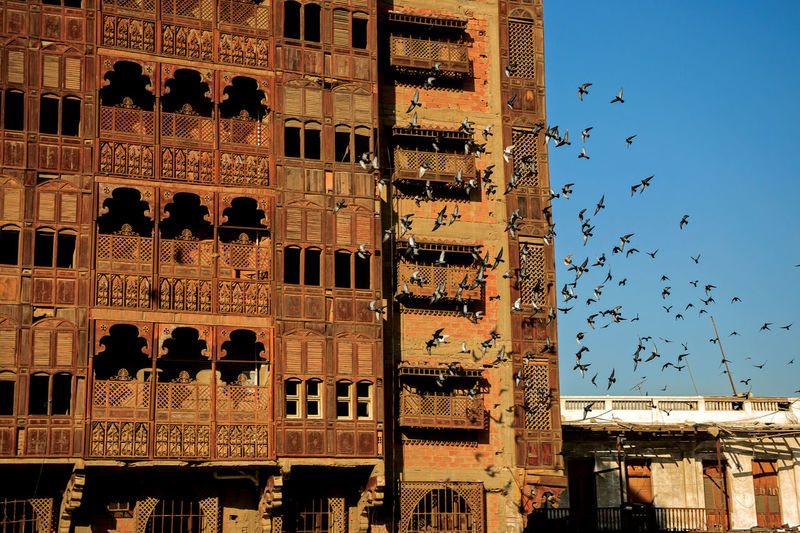 The ballad of Al-Balad Saudi Arabia Arabic UNESCO World Heritage Site Roshan Jeddah Traditional House Ruins Window Pattern Sky Architecture Close-up Building Exterior Built Structure Flock Of Birds Historic Avian Pigeon Dove - Bird Historic Building Migrating Bird