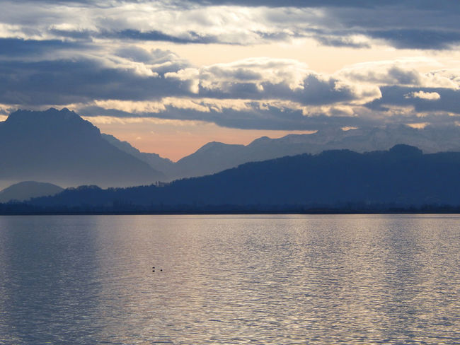 Beauty In Nature Bodensee Cloud - Sky Day Germany Lake Landscape Mountain Mountain Range Nature Outdoors Sky Sunset Tranquil Scene Tranquility Water