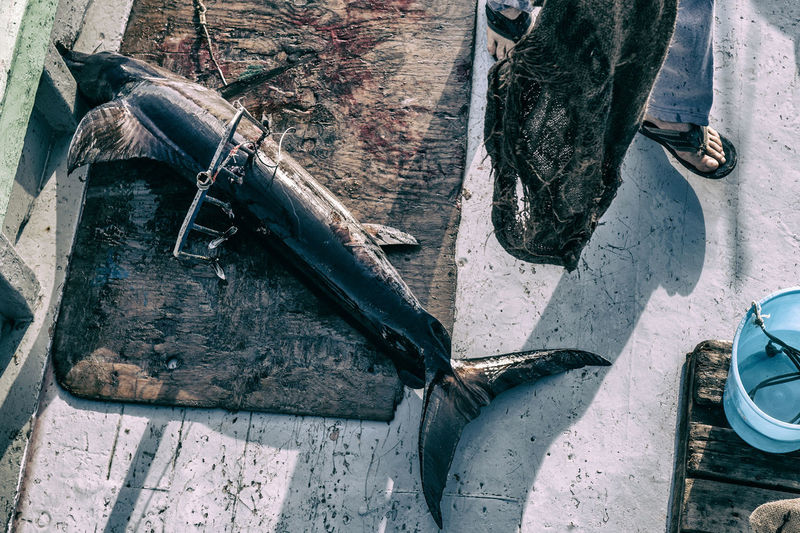 High angle view of abandoned boat