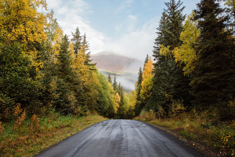 Road amidst trees in forest against sky during autumn