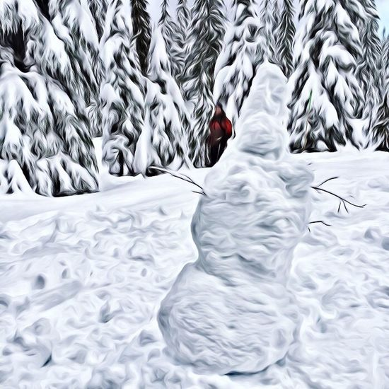 We had a great time on our first time snowshoeing Snow Edit Superphoto Painting App Vancouver