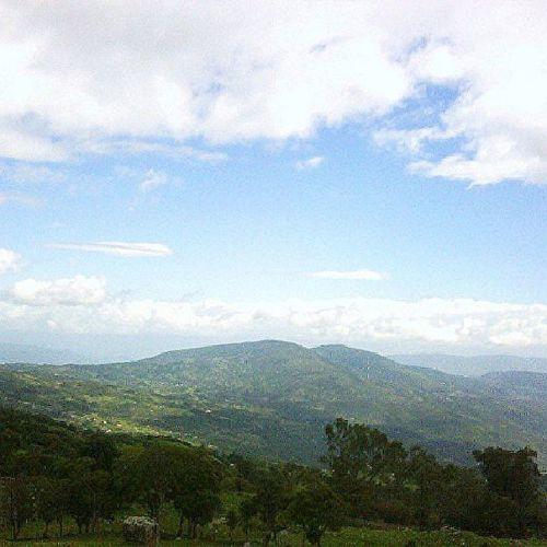 Dotspin Betosalvestrini Art Original Venezuela Sancristobal Natural - peaceful green 8