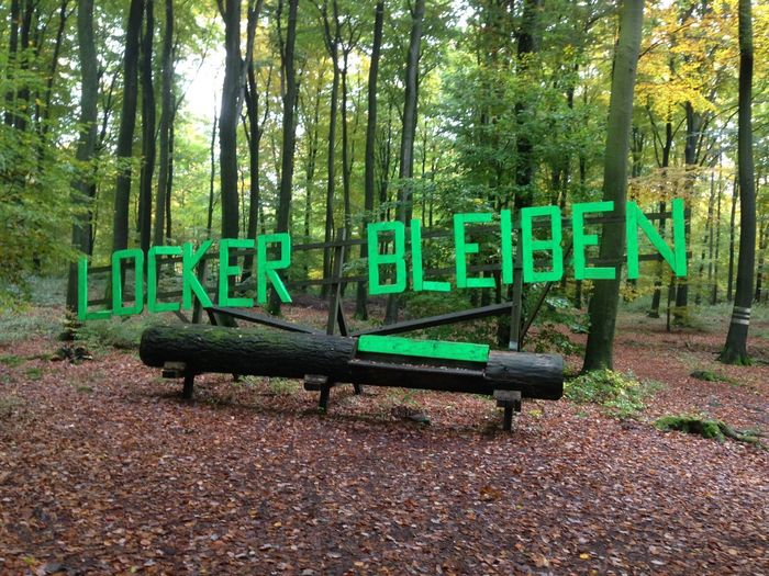 RELAX EyeEm Best Shots Playground Relax Locker Bleiben Deutschland EyeEm Nature Lover EyeEm Germany Saarbrucken Saarschleife Tree Text Leaf Day Tree Trunk Growth Green Color No People Nature Forest